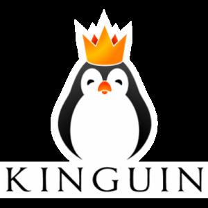DigitalMoneyTimes_Kinguin