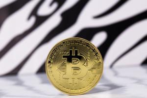 DigitalMoneyTimes_Bitcoin
