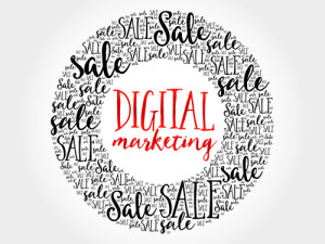 DigitalMoneyTimes_Social Media Marketing Digital