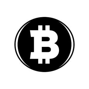 DigitalMoneyTimes_Importance Bitcoin