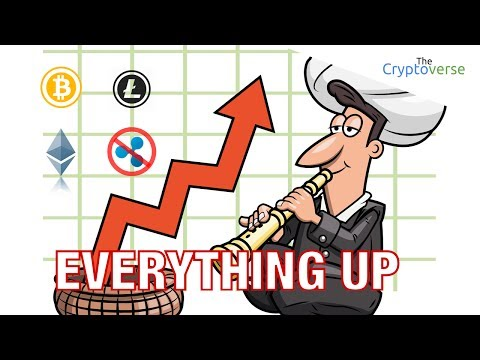 Everything Is Up (except Ripple) / IOTA +31% / VERI +28% / ETH +10% / BTC Chart Reading (17 July 17)