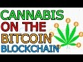 Cannabis Strains on Bitcoin's Blockchain a Relief for Patients, Growers (The Cryptoverse #119)