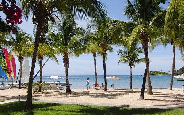 Billionaire Calvin Ayre is Building a $100m Bitcoin Cash Resort in Antigua