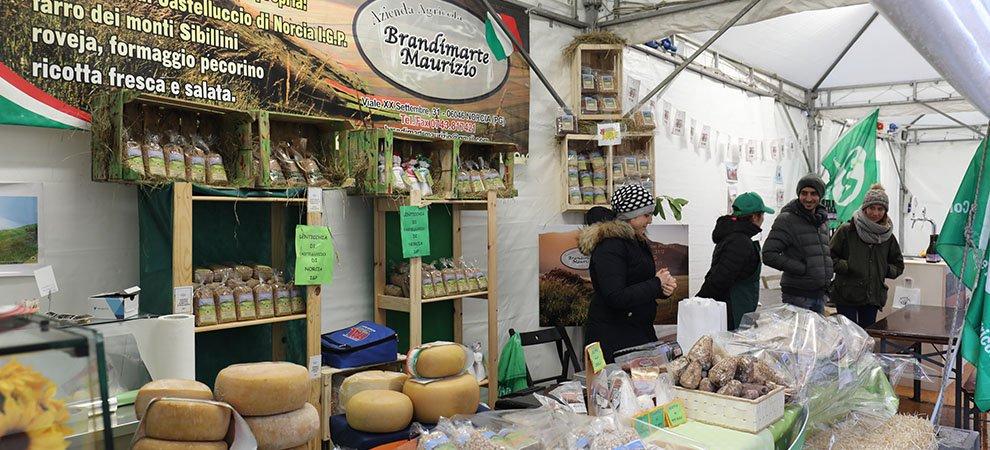 earthquake market