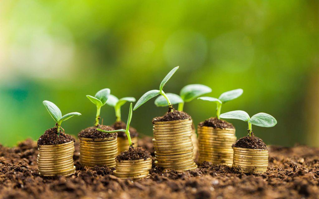 Biocoin: Russian Green Initiative Builds a Better Tomorrow