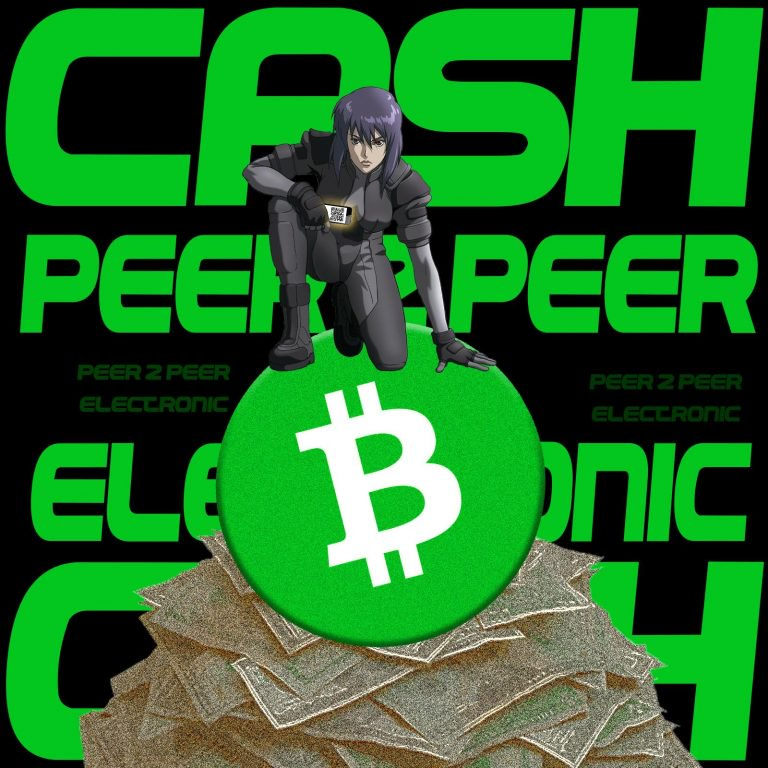 Ken Shishido Wants Everybody to Use the 'Cash' Denomination for Fractions of BCH