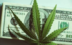 """TASE Shell Company Switches Plans From """"Blockchain"""" to Cannabis"""