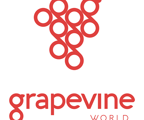 Grapevine: Saving Healthcare Data and the World