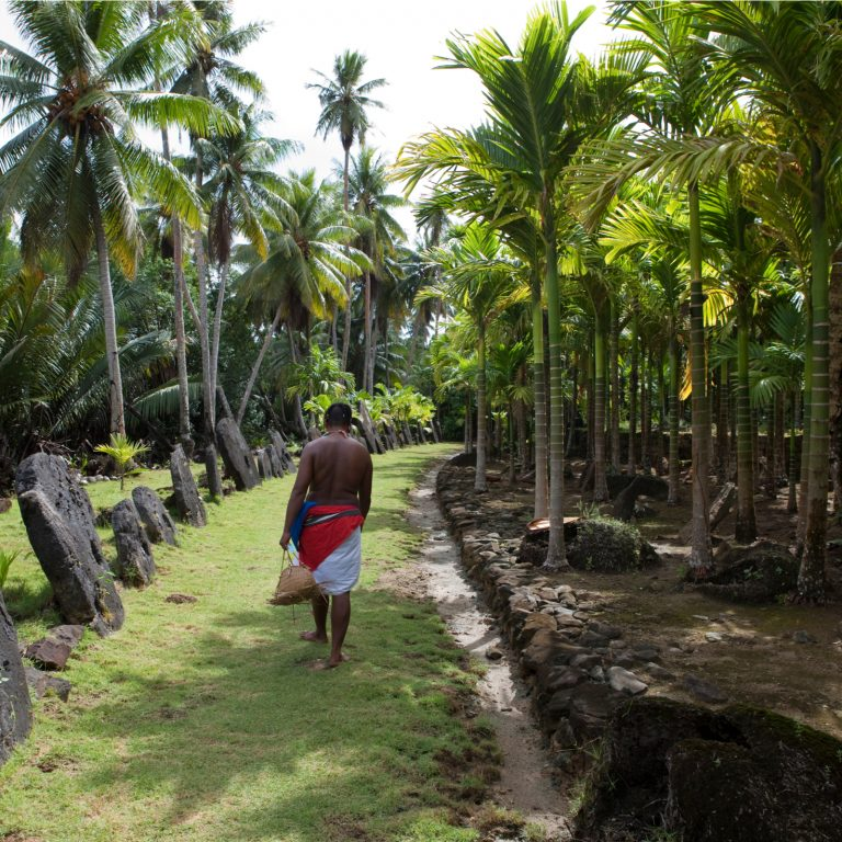 Archaeologists Argue Micronesian Stone Money Comprises Bitcoin Predecessor