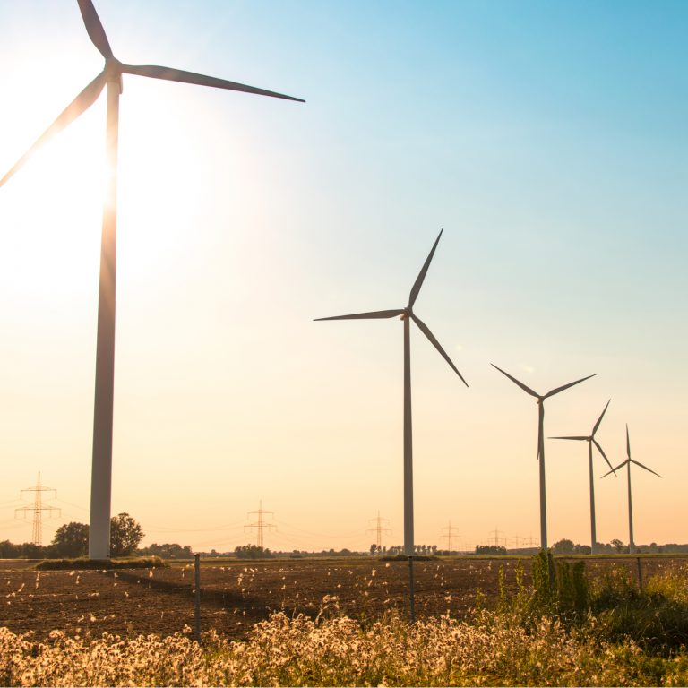 Bitcoin Mining News: Brookstone to Build Wind Farm in Morocco, Québec Increases Rates