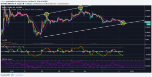 Ripple (XRP) Might Surprise The World In 2019