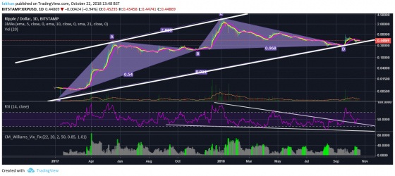 Ripple (XRP) Might Touch $5 In Q1 Of 2019