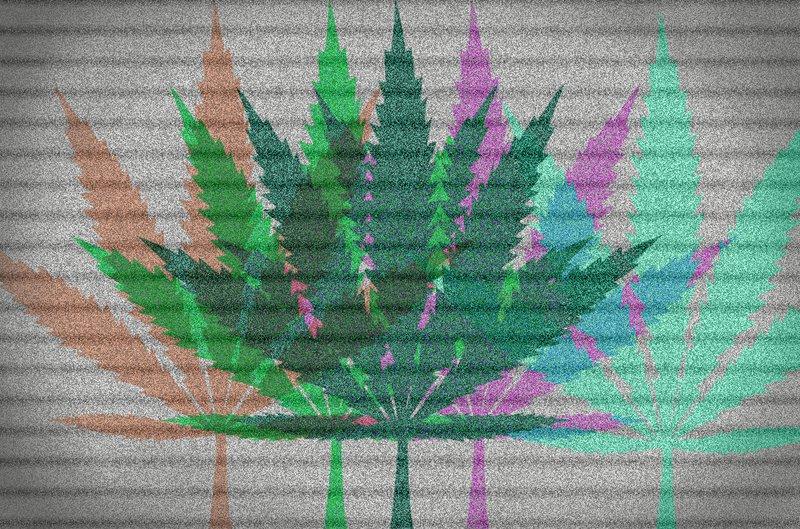 BAC Weed bill.jpg